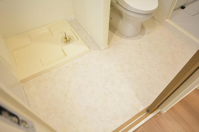 サンローゼ新宿 洗面室