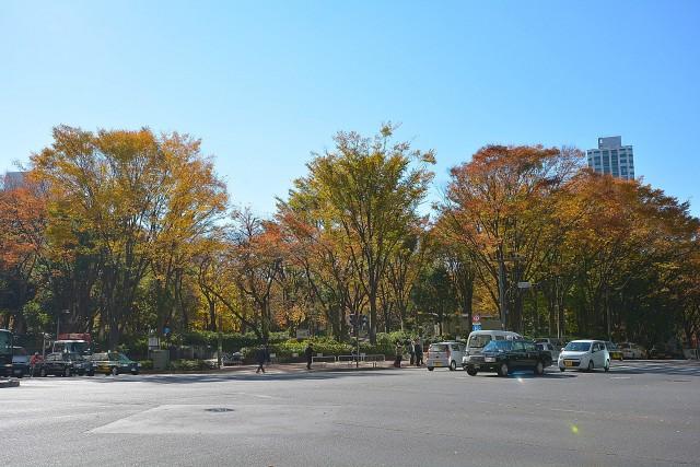 サンローゼ新宿 新宿中央公園