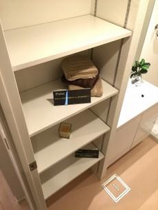 コスモ二子玉川 洗面室&バスルーム収納