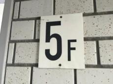 野沢ビューグリーン 5F