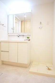 カーサ第2蒲田 洗面化粧台と洗濯機置場