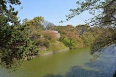 ライオンズマンション飯田橋駅前 北の丸公園