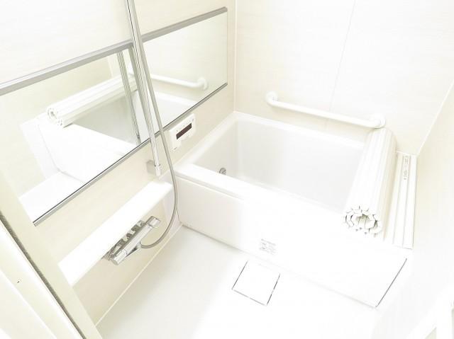 日興ロイヤルパレス元麻布 バスルーム