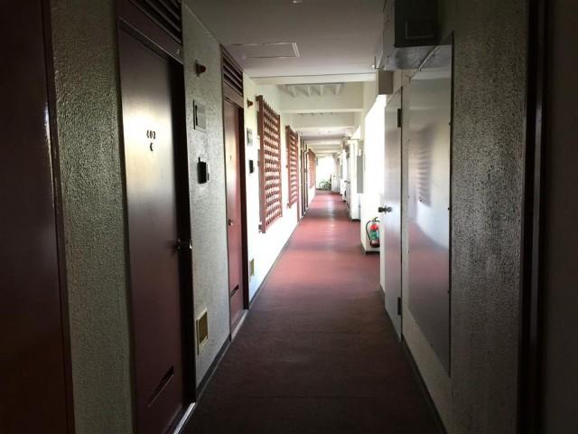 玉川サンケイハウス 外階段