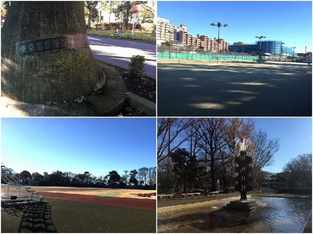 砧公園ヒミコマンション 周辺環境