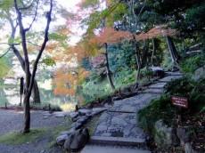 ハイネス小石川 周辺環境