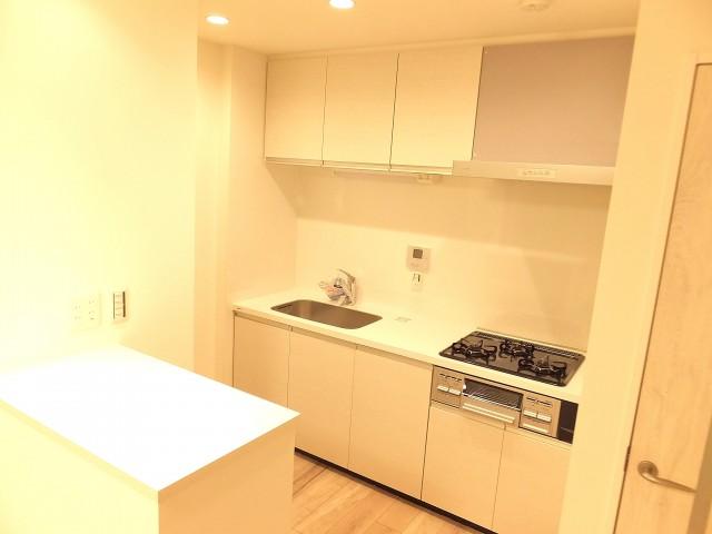 上野ロイヤルハイツ キッチン