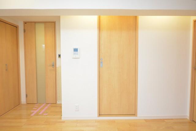シャトレー五反田 洗面室扉