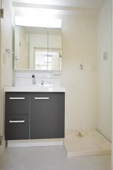 シャンボール原宿 洗面化粧台と洗濯機置場