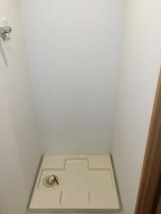 ライオンズマンション碑文谷第2 洗濯機置場