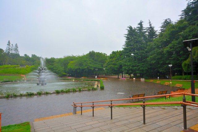 池尻大橋周辺 世田谷公園