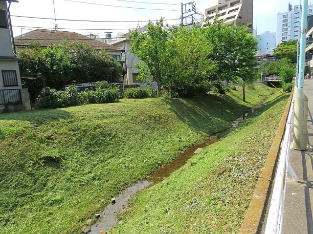 東北沢コーポラス 緑道