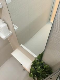 パーク・ハイム淡島 バスルーム