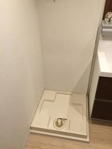 秀和清水池レジデンス 洗濯機置場