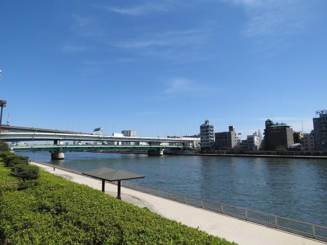デューク・スカーラ日本橋 隅田川テラス