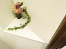 ナイスアーバン石川台 トイレ内のカウンター