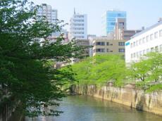 ファムール目黒 目黒川