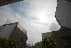 北新宿パレス303 眺望