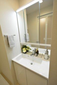 セブンスターマンション三軒茶屋804 三面鏡