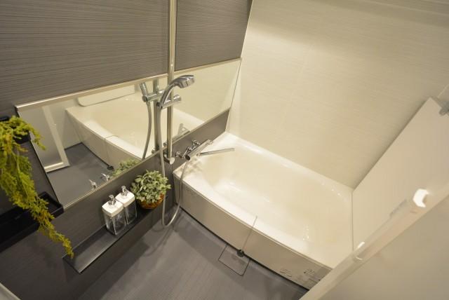 ルネ御苑プラザ313 バスルーム