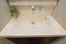 玉川コーポラス 207号室 洗面台