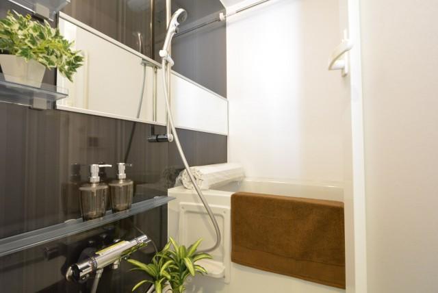 玉川コーポラス 207号室 バスルーム