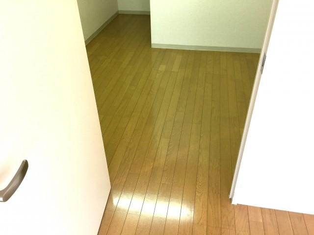 桜丘フラワーホーム 洋室約10.1帖ウォークインクローゼット