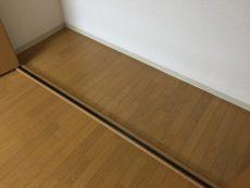 桜丘フラワーホーム 洋室約10.7帖収納