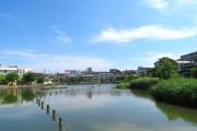 ジェイパーク上池台 小池公園