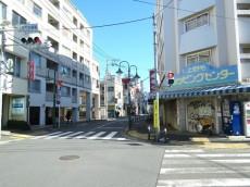 東急ドエルアルス上野毛 上野毛駅周辺