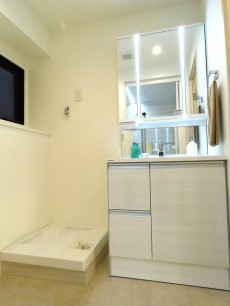 ニューお茶の水 洗濯機置場と洗面化粧台