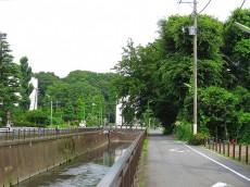 祖師谷大蔵サマリヤマンション 仙川