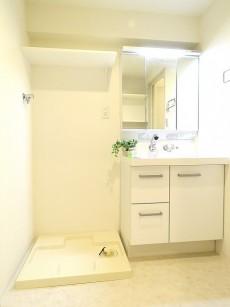 ベルメゾン鷹番 洗濯機置場と洗面化粧台
