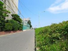 ハイネス尾山台 前面道路