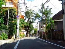 コーポ大岡山 前面道路