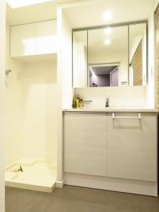 ヴィラ赤坂 洗濯機置場と洗面化粧台