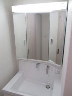 ライオンズプラザ石川台 4洗面所