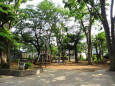 コーポ中野 マンション裏手の公園