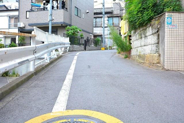 パレ・ドール文京メトロプラザ第1 エントランス前道路