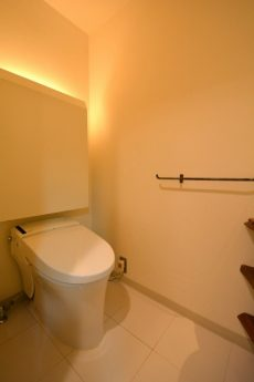 東急ドエルアルス上野毛206  トイレ