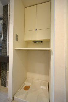 東急ドエルアルス上野毛206  洗濯機置場