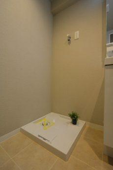 ライオンズマンション上野毛206ライオンズマンション上野毛206 洗濯機置場