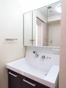 メイツ大井町 洗面化粧台