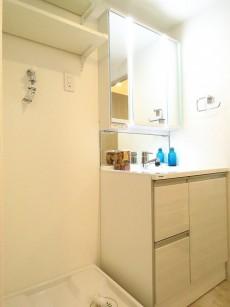 秀和恵比寿レジデンス 洗濯機置場と洗面化粧台