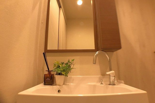 東大井スカイハイツ 洗面室