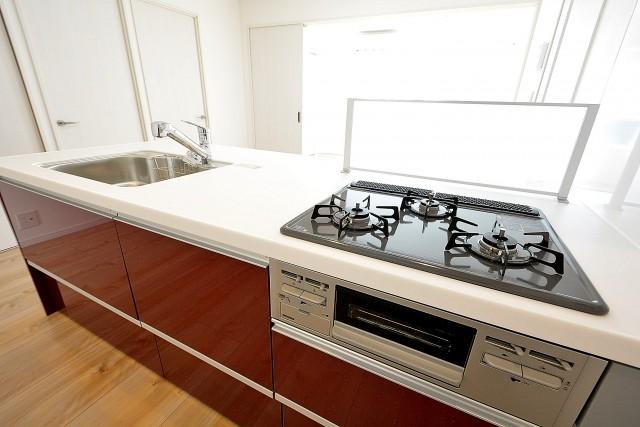 藤和護国寺コープ オープンキッチン