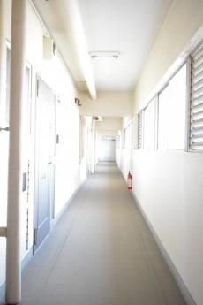ガーデン堀ノ内住宅 共用廊下