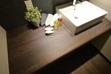 サンライン南青山ハイツ 洗面化粧台