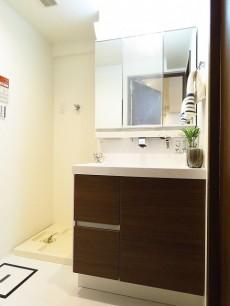 シャンボール第二都立大 洗濯機置場と洗面化粧台