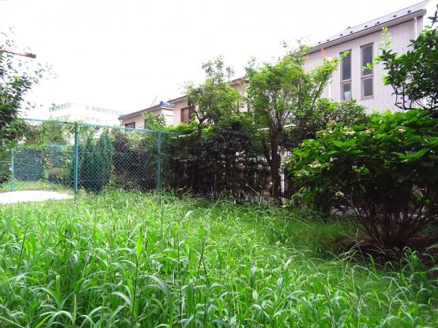 日商岩井碑文谷マンション お庭